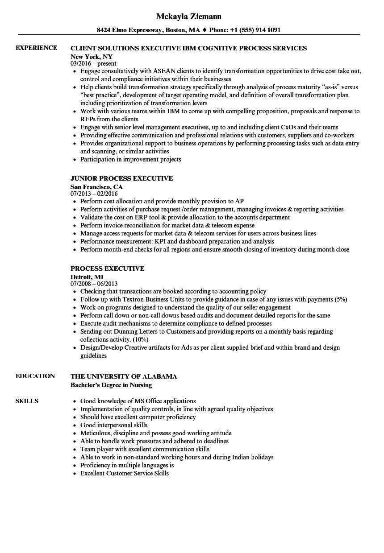 process-executive-job-responsibilities