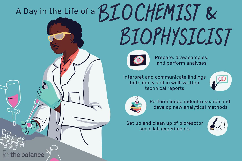 biophysicist-job-responsibilities