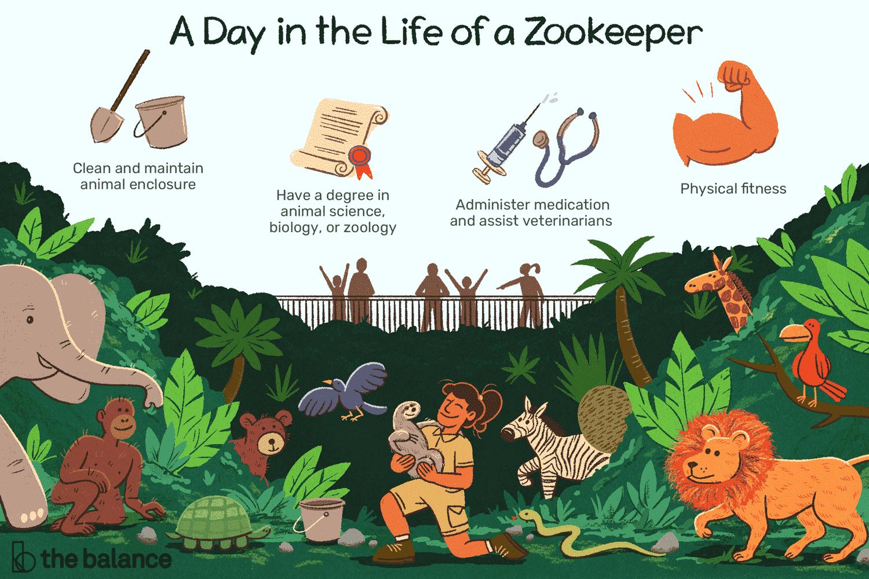 zookeeper-job-responsibilities-2