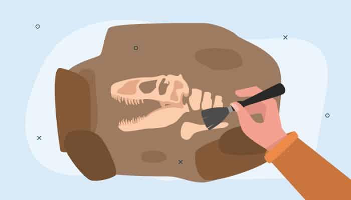 palaeontologist-job-responsibilities